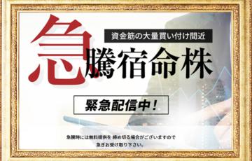 ダイレクト口コミ評判